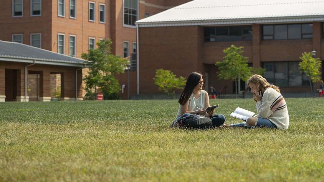 Students on the lawn
