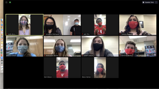 NSF students on Zoom call